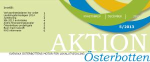 Aktion Österbottens nyhetsbrev 5-2013